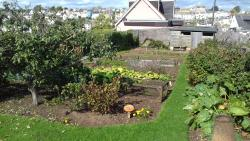 Vacant Allotments for Residents